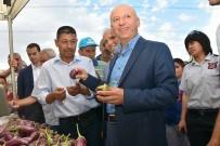 YEMLIHA - Yamula Patlıcanı Tanıtım Etkinliği Hazırlıkları Tamamlandı