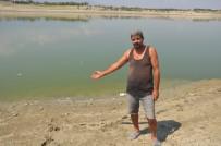 ALİ GÜVEN - Denizli'de Baraj Göletinde Toplu Balık Ölümleri