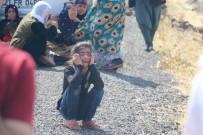 Diyarbakır'da Trafik Kazası Açıklaması 1 Ölü, 2'Si Ağır 9 Yaralı