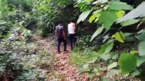 KUZUCULU - Drone Ve Fotokapanlı Uyuşturucu Operasyonu