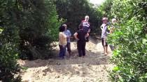 GÜNCELLEME - Adana'da Bahçede Gömülü Ceset Bulundu