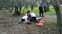 İznik'teki Cinayetin Sanıkları Hakim Karşısına Çıktı