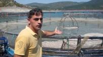 (Özel) Almus Baraj Gölünde Su Seviyesinin Düşmesi Balıkçıları Endişelendiriyor