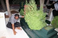 28 ŞUBAT - (Özel) Oğlunun Ölümüne Dayanamayan Baba Mezarı Başında Yatıyor