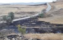 AKÇALı - Sungurlu'da Arazi Yangını