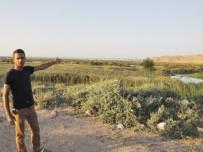 SU KAYBI - 10 Milyon TL Yatırım Yapılan Zilek Su Kaynakları Kurudu