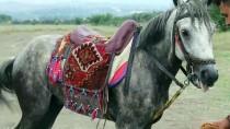 YARIŞ PİSTİ - 4. Düziçi Belediyesi Rahvan At Yarışları
