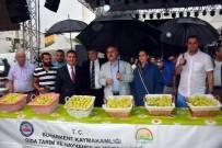 YÜZME YARIŞMASI - Buharkent'in Taze İnciri Festivalle Tanıtıldı