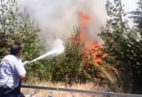 Kahramanmaraş-Gaziantep Sınırında Çıkan Çifte Orman Yangını Korkuttu