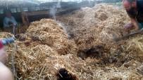 Edremit'te Korkutan Samanlık Yangını