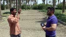 KIŞ MEVSİMİ - Kuraklık 'İki Nehir Ülkesi' Irak'ta Tarımı Bitirmek Üzere