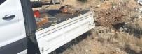 CARETTA CARETTA - Ölü Caretta Caretta Kıyıya Vurdu