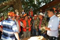 ARSLANKÖY - Tuna Açıklaması 'Çiftçilerimize Destek Oluyoruz'