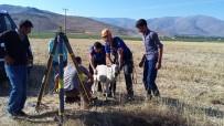 AFAD, Su Kuyusuna Düşen Koyunu Kurtardı
