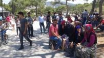 ZEYTINLIK - Balıkesir'de Köylüler Taş Ocağına Karşı Yolu Kapattı