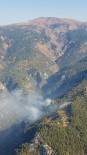 YILDIRIM DÜŞMESİ - Köyceğiz'de Orman Yangını