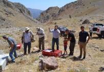 ALI ÖZDEMIR - Nurhak'ta Bin 500 Keklik Doğaya Kanat Çırptı