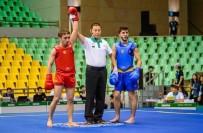 MEHMET DEMIRCI - Wushu Şampiyonasında Dünya İkincisi Oldu