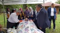GÜZELDERE ŞELALESİ - 5 Yıldır Güneşe Hasret ALS Hastası Kadın Mesire Alanının Keyfini Çıkarttı