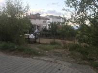 GÜRÜLTÜ KİRLİLİĞİ - Akçakoca Kent Merkezinde Fındık Harmanı Yapanlar Uyarıldı