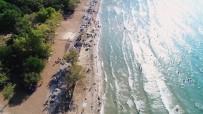 DİLEK YARIMADASI - Dilek Yarımadası'nda Ormanla İç İçe Plaj Keyfi