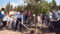 TRABZON HURMASI - Kepez Belediyesi'nden Dokuma Botanik'e Barış Fidanı