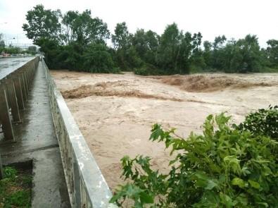 Karadeniz Sahil Yolu'nda sel suları köprüyü yıktı, mahsur kalanlar var!