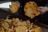 'Tavuk Tirmidi' Tezgahlarda Son Günlerini Yaşıyor