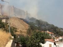 ZEYTINLIK - Ayasuluk Kalesi'nin Yanındaki Yerleşim Yerlerini Tehdit Eden Yangın