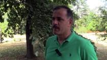 KUŞ YUVASI - 'Böcek Avcıları'na Yuva Desteği