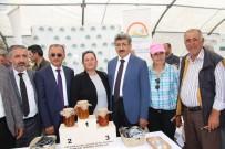 EMIN BILMEZ - Ardahan'da Bal Festivali Coşkusu