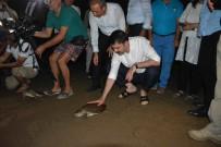 MEHMET YAVUZ DEMIR - Bakan Kurum, Caretta Carettaları Denizle Buluşturdu