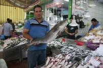 Denizli'de Balıklar Tezgahlardaki Yerini Aldı