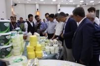 Doğu Anadolu'nun Birbirinden Lezzetli Peynirleri Bitlis'te Buluştu
