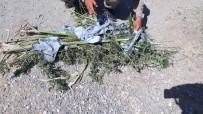 Elazığ'da 1,5 Kilo Esrar Ele Geçirildi