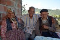 107'Lik 'Çınar'