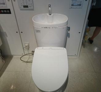 Bu tuvaletlerin fiyatları dudak uçuklatıyor
