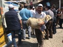 KONYA OVASı - Derbent'te Küçükbaş Hayvan Desteği