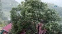 Doğu'da Yüksek Kesimlere Mevsimin İlk Karı Düştü