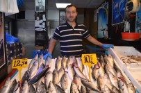 EMIN AVCı - Fırtına Nedeniyle Balıkçılar Deniz Açılamayınca Palamut Fiyatını İkiye Katladı