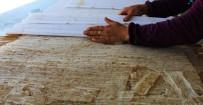 Kahramanmaraş'ın Cips Tarhanası