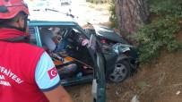 Otomobil Ağaca Çarptı Açıklaması 1 Yaralı