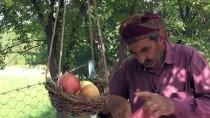 Yetiştirdiği Meyveleri 'Göz Hakkı Sepeti' İle İkram Ediyor