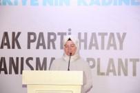 DEVİR TESLİM - AK Parti Hatay İl Kadın Kolları Başkanı Sara Gök Göreve Başladı