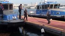 DENİZ POLİSİ - İstanbul'da 'Türkiye Güven Huzur-5' Uygulaması
