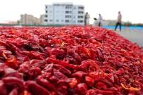 Şanlıurfa'da İsot Üretimi İçin 960 Dönüm Alan Ayrılacak