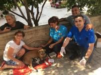 KONYAALTI BELEDİYESİ - Su Borusuna Sıkışan Yavru Köpekler Kurtarıldı