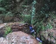 Tarzan'a Özendi Ama Finalde Suya Düştü