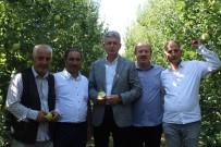 BASIN MENSUPLARI - 26. Yeşil İhsaniye Elma Festivali Başladı