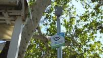 ÜCRETSİZ İNTERNET - Burhaniye'de Ücretsiz İnternet